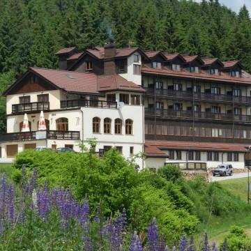 hotel_zieleniec